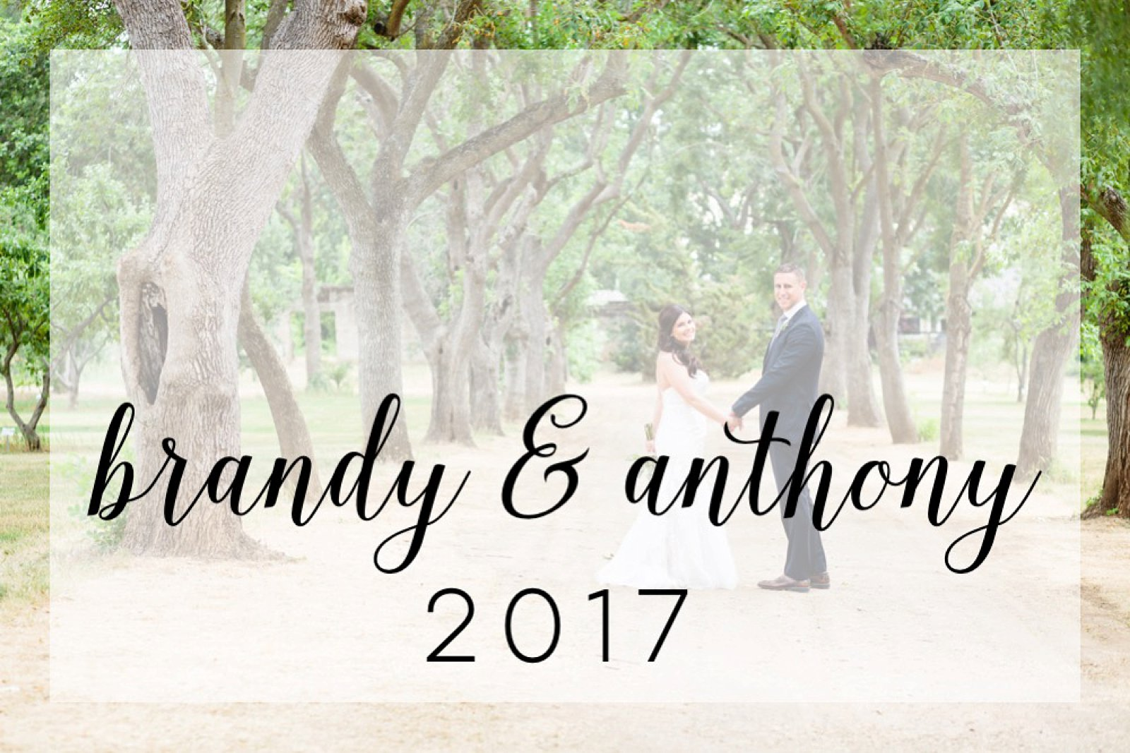 Ravenswood Wedding | Livermore, CA